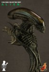 379 DSC5460 main4 3x4 103x150 ALIEN   1/4th scale ALIEN collectible bust