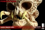 400048 press08 001 150x101 Classic Predator Skull Prop Replica