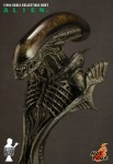 DSC5461 3x4 103x150 ALIEN   1/4th scale ALIEN collectible bust
