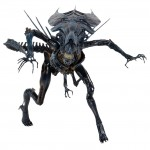 1300x Alien Queen2 150x150 Alien Queen Action Figure