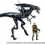 590w Alien Queen4 150x150 Alien Queen Action Figure